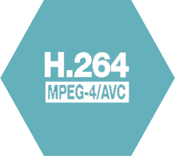 H.264 and MPEG-4